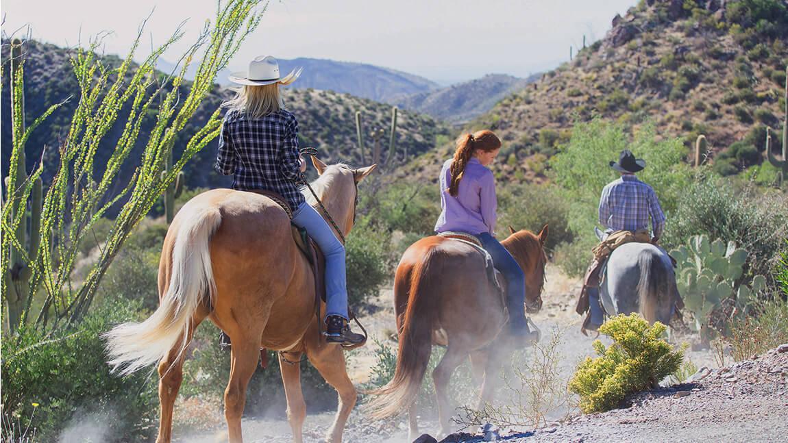 Riding horses - Golf Communities in Scottsdale AZ - Seven Desert Mountain
