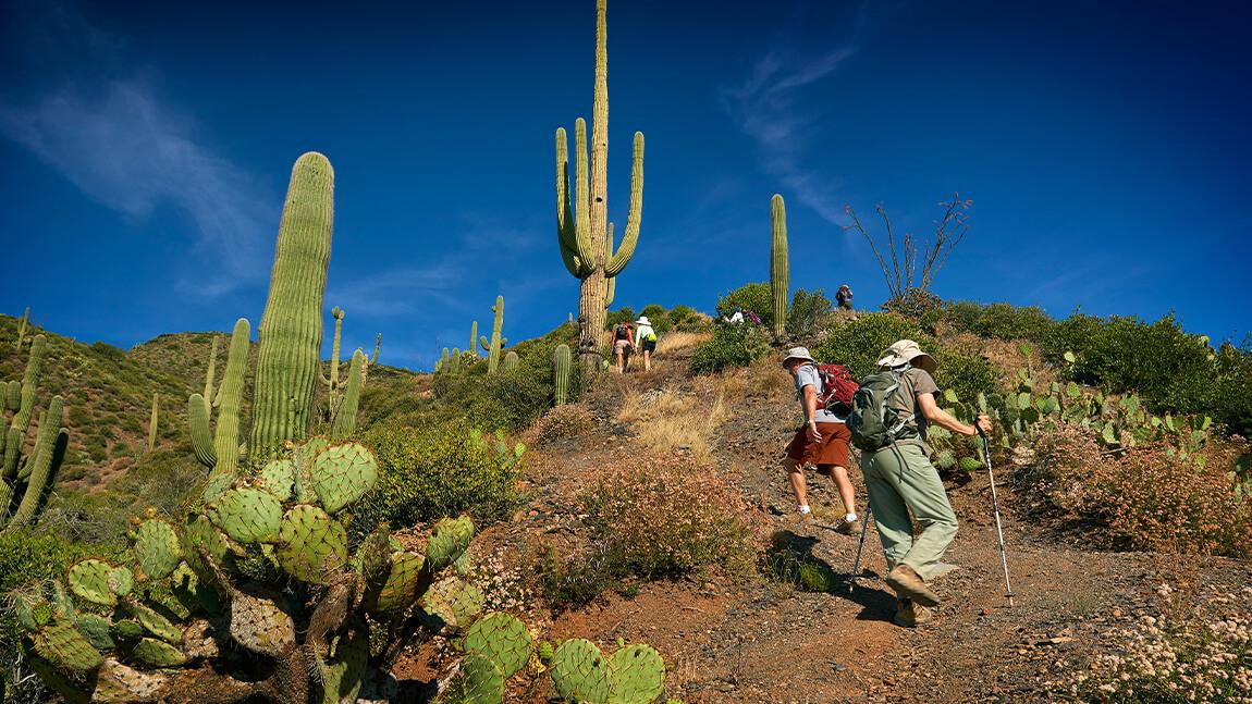 Hiking - Golf Communities in Scottsdale AZ - Seven Desert Mountain